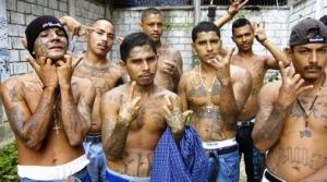 Illegals flashing gang signs MS El Salvador