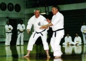 Isshin-ryu Karate