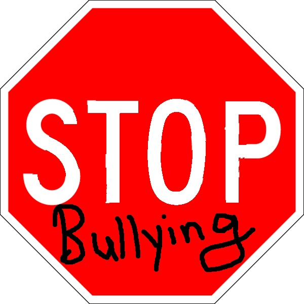 Bullies: A Very Valuable Lesson!
