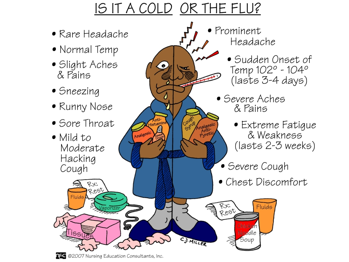 Starve a Cold and Feed a Fever